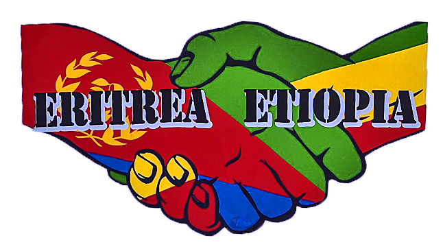Eritrea & Ethiopia: Toward a healthy future